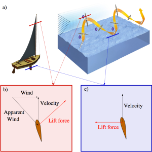 a) A sailboat and the albatross trajectory. b) Horizontal cross section of the sail or albatross wing in the high altitude section of its trajectory c) Horizontal cross section of the sailboat keel or albatross wing in the low altitude section of its trajectory.