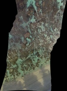 Figure 3: Sample section of map of the reef in Ofu. This is not yet processed with the Fluid-Lensing algorithm. Post-processing resolution will be 4 times higher. (Photography by Ved Chirayath)
