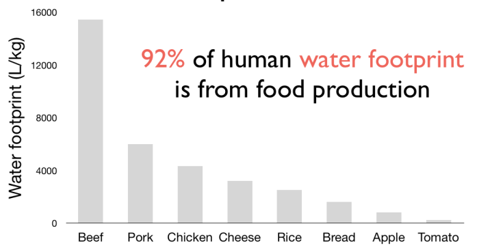 Figure 3: The water footprint from food production.