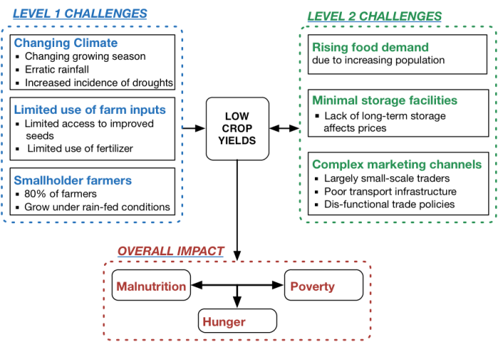 Figure 1. Factors affecting crop production and associated consequences in East Africa
