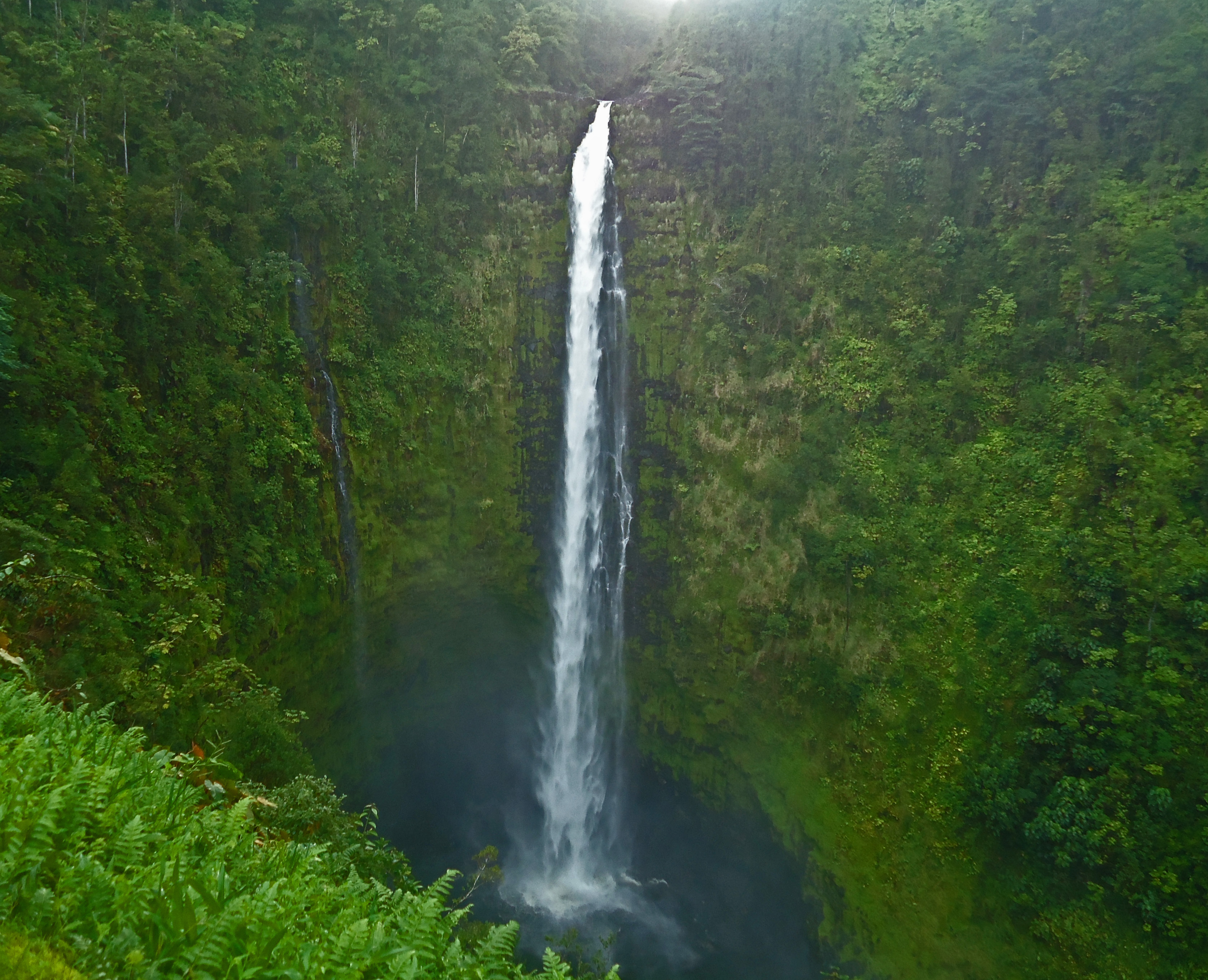 Freshwater fish in hawaii - Figure 3 Akaka Falls Is One Of The Tallest Waterfalls 422 Feet On