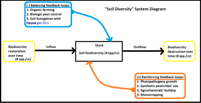 The system interactions of soil biodiversity