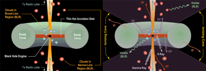 Left: The main parts of an active galactic nucleus (AGN) in the current paradigm called the Unified Model. Right: Types of electromagnetic radiation that different parts of the structure emit most, from radio (RF) to gamma rays. Image credit: Brooks/Cole Thomson Learning via AstronomyOnline.org
