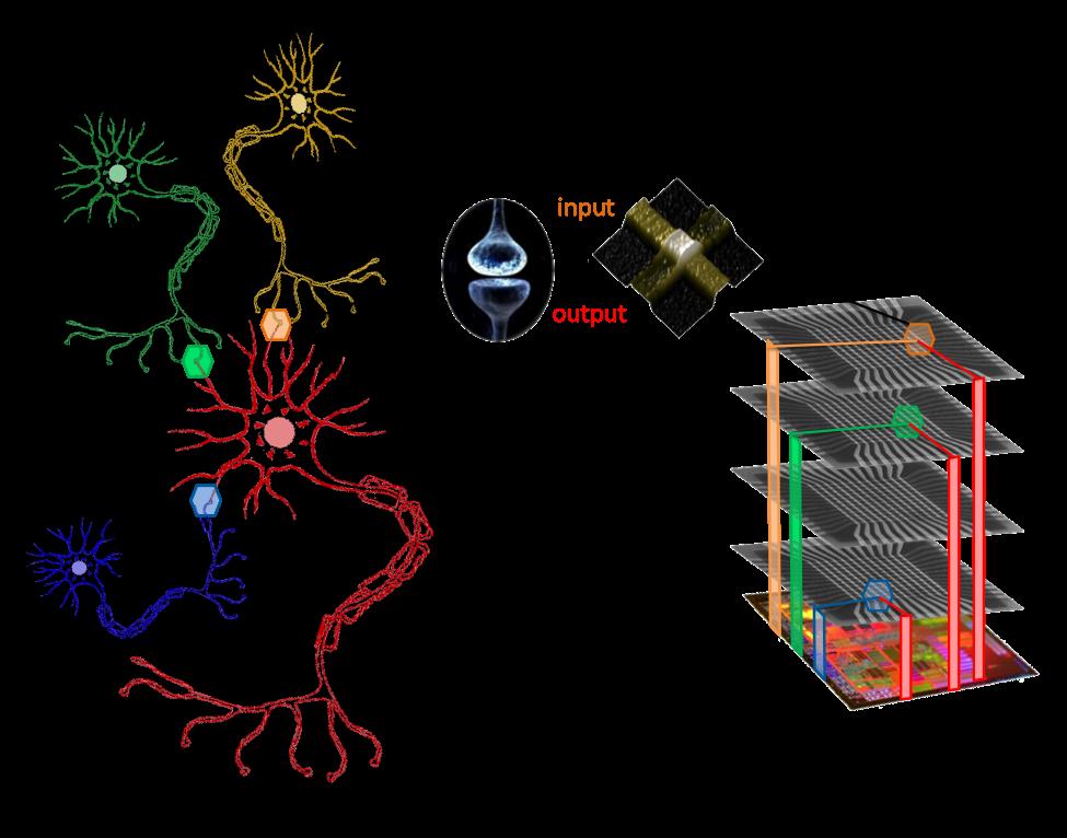 Картинки по запросу artificial synapse